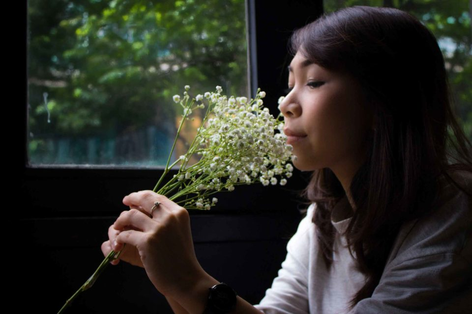 Baby's-breath (Gypsophila) - Yoel Septianto