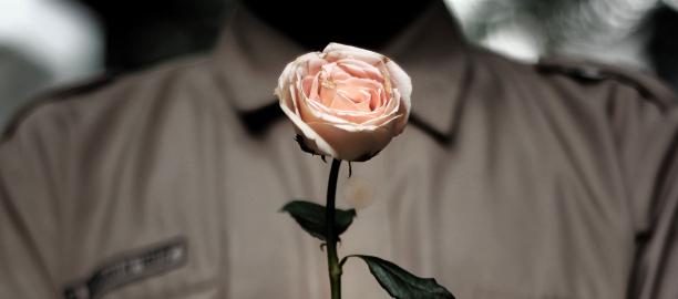 Rose (Rosa) – Adimas Pradana Andaru